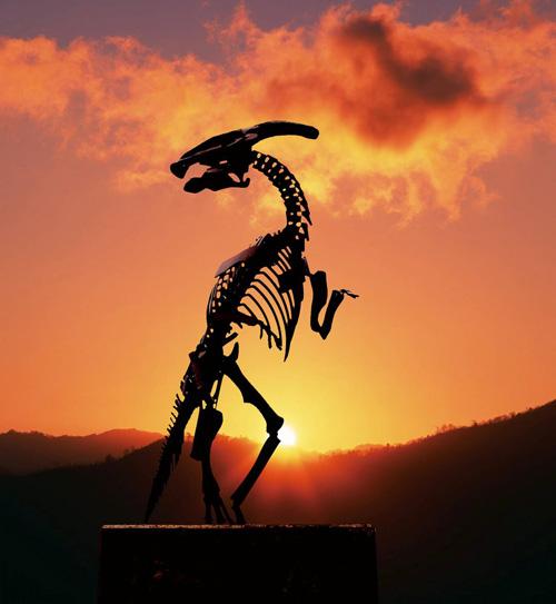 遥か一億年前の昔に出会える御所浦は、棚底港(倉岳)から海上タクシーで1... 天草トントン拍子の